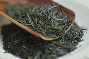 初摘茶 茶葉